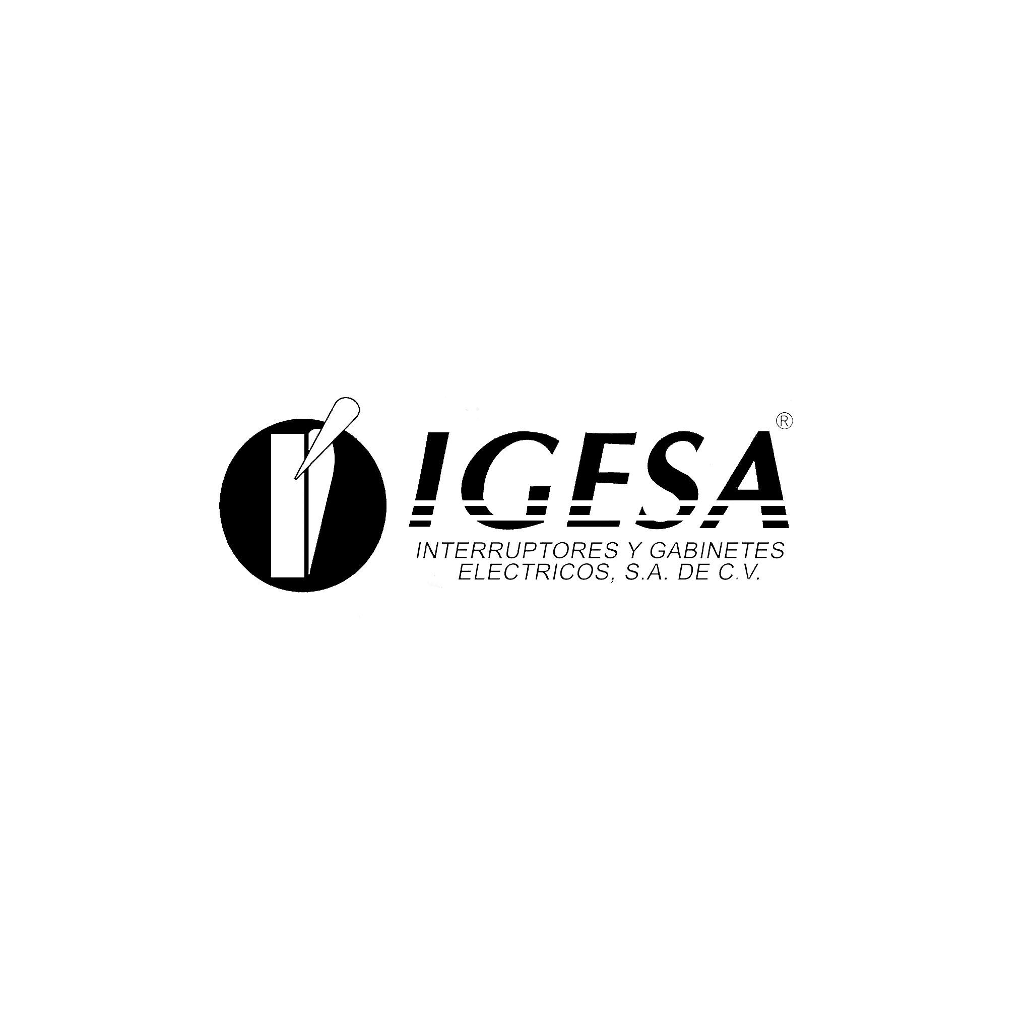 cen_igesa